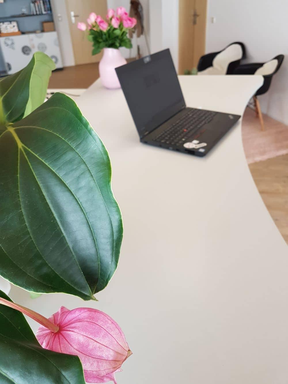 Bürovermietung Praxis Cowork